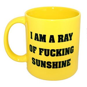 Mug Ray of Sunshine 22oz