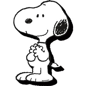 Funky chunky SNOOPY magnet
